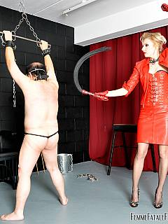 Femdom pig is begging the blonde to tie him to the BDSM spreadbar and whip his ass