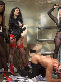 A team of three girls are handling big guy teaching him a set of femdom lessons, making loof like a sissy and beg for more anal punishments