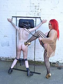Wwe bella twins nude playboy