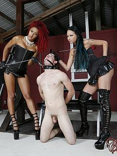 Foot domination is the essence of femdom and those two leggy babes are enjoying it big time
