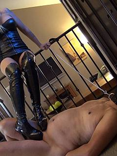 Little bit of begging is required before gorgeous dominatrix would trample unprotected balls in high heels knee boots