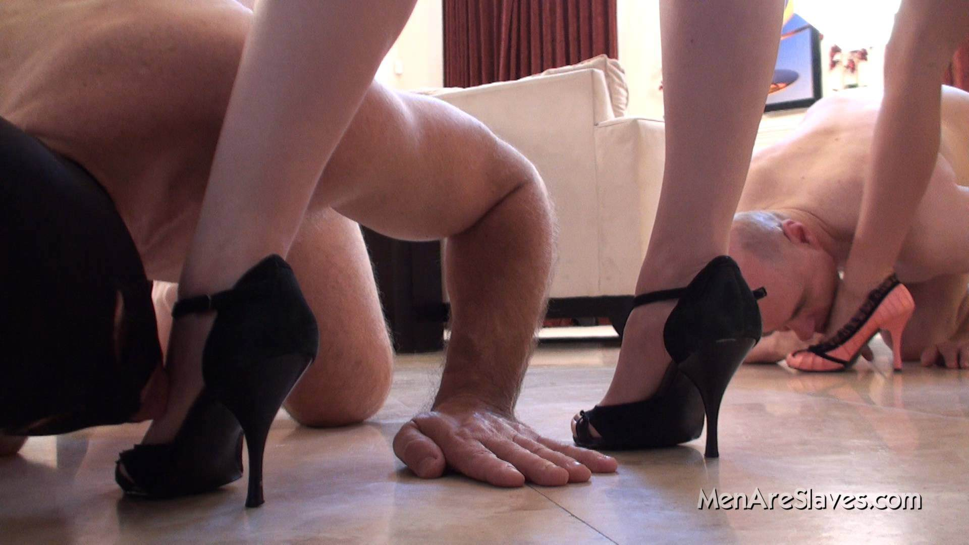 Picture #10 of Sluts returned home from their dates and kneeling slaves are there to kiss their feet and hoping to get whipped